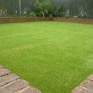 Alternative to Grass