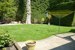 Artificial Lawn London