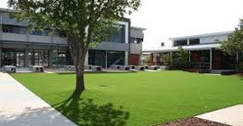 Artificial grass for exhibitions